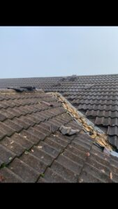 Skylight repair Torquay